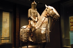 Horse and rider protector