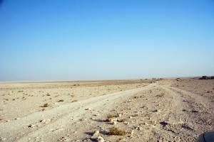 Dirt & rocky track along Al Asailah - desert rose site