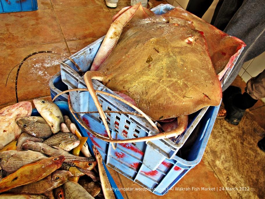 Al Wakrah Fish Market   CGK-DOH