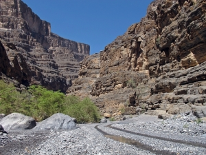 Another view of Wadi Nakhr
