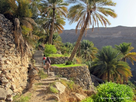 One of the prettiest village in Oman