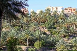 Misfat Al Abryeen