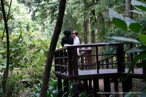 Elderly enjoys Taipei Botanical Garden