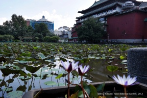 Lotus Pond and National Museum of History on the background