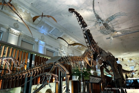 Dinosaurs at Land Bank Exhibition Hall