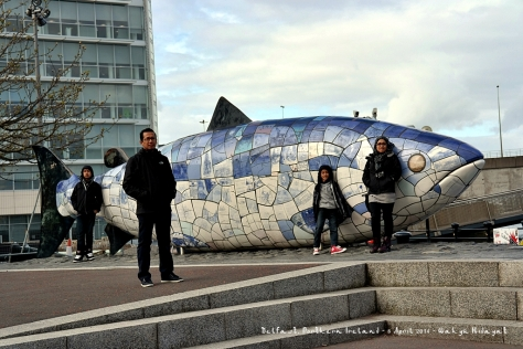 Big Fish, Belfast