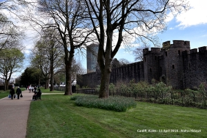 Cardiff Castle, side view
