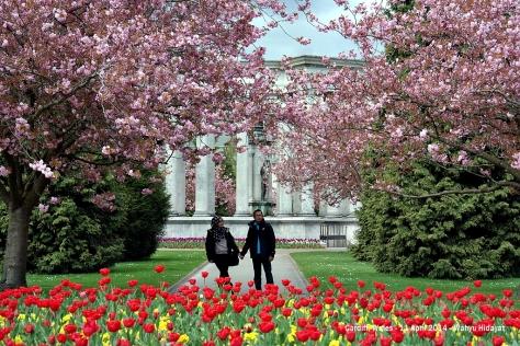 Alexandra Gardens, opposite Cardiff University