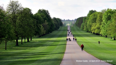 The Long Walk, miles of straight path that connects Windsor Castle to Snow Hill in Windsor Great Park