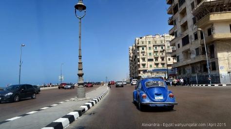 Alexandria (10)