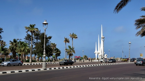Alexandria (17)