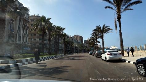 Alexandria (19)