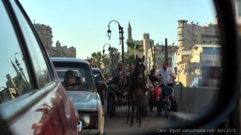 Cairo (41)