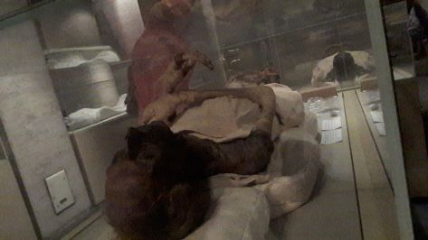 Ramses II mummy. Special ticket needed to Royal Mummies room, but it worths visiting